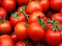 17 ton domatesi Ukrayna geri gönderdi