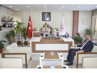 İl Müdürü Yıldız, koltuğunu Sudenur Yılmaz'a devretti