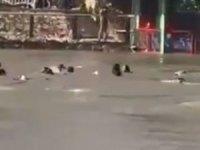 Musul'da feribot battı: 72 ölü