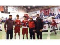 Vanlı boksörlerden büyük başarı