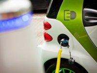 LeasePlan'den elektrikli araçlara 'yeşil' adım
