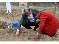 '48 Muğla 48' Proje'sinin ilk tohumları toprakla buluştu