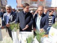 Hisarcık'ta Orman Haftasında 3 bin 500 fidan dağıtıldı