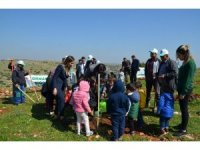 Nizip'te Adalet Ormanı oluşturuldu
