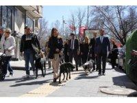 Çankaya adayı Türkmen seçim çalışmalarını sürdürüyor