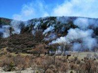 Seyitgazi Yarbasan'da orman yangını