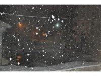 Yüksekova'da Lapa Lapa Yağan Kar Yağışı Şaşırttı