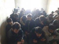 Van'da 261 kaçak göçmen yakalandı
