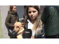 Kağıthane'deki evinden köpeğiyle 10 dakika önce çıkan genç kız o anları anlattı