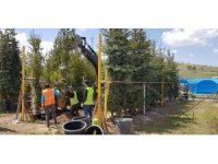 Nevşehir'deki 110 bin kişi için 110 bin ağaç dikilecek