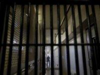 Üç gazeteci gözaltında
