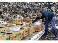 Silopi'de 994 kilogram kaçak muz imha edildi