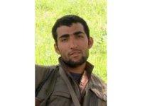PKK'nın sözde Gabar Dağı hareketli takım sorumlusu etkisiz hale getirildi