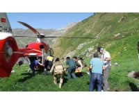 Kozluk'ta hayvan otlatan kadın kayalıklardan düşerek ağır yaralandı