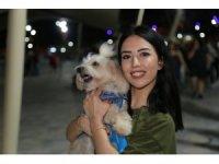 Evcil hayvan giremez yasağının olduğu Millet parkına köpekleri ile girerek yasağı protesto ettiler