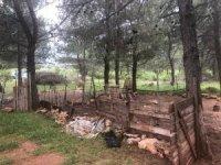 Topraktan alınan lastik numunesi, hırsızları 300 kilometre uzaklıkta ele verdi