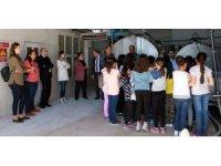 İlköğretim öğrencileri Süt Toplama Soğutma ve Süt Analiz Merkezini gezdi
