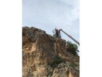 Kayalıklarda mahsur kalan kedi kurtarıldı
