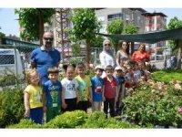 Anaokulu öğrencileri bitkilerle tanıştı