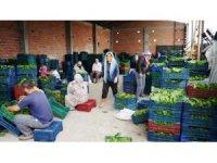 Sarıgöl'de bağ yaprağı piyasası canlandı