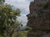 Bu kaya insan yüzünü andırıyor