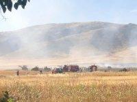 Nusaybin'de çıkan yangın ekinlere sıçradı