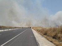 Mayınlı sahada çıkan yangın buğday tarlalarına sıçradı