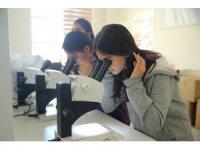 Öğrenciler, entomoloji laboratuvarı ziyaret etti