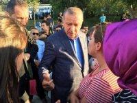 """Cumhurbaşkanı Erdoğan: """"Mursi kardeşimize, şehidimize Allah'tan rahmet diliyorum"""""""