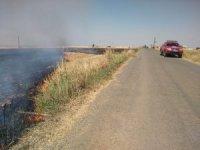 Anız yangını 40 dönüm buğday tarlasını küle çevirdi