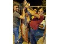 Kızılırmak'ta dev yayın balığı yakaladılar