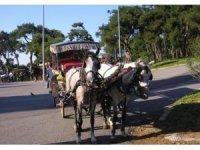 İzmir'in o ilçesinde faytonların kullanımı yasaklandı
