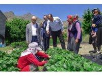 """Vali Demirtaş: """"Adana'nın tarımsal potansiyeli iyi değerlendirilmeli"""""""