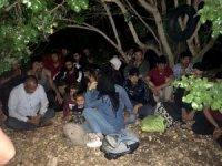 Didim'de 112 göçmen ve 3 göçmen kaçakçısı yakalandı