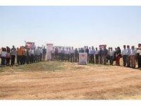 Mardin'de çiftçilere arda nohut çeşidi tanıtıldı