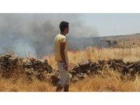 Mardin'de 6 bin dönümlük anız yangını
