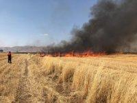 Mardin'de anız yangını