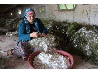 Kümeslerinin yetersizliği nedeniyle tavukçuluk yapamayan köylüler çareyi ipekböceğinde buldu