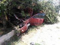 Otomobil çarptığı ağacın altında kaldı: 3 yaralı