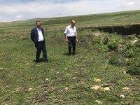 Tarım ve Orman Müdürü Dr. Bozkale köyünde incelemelerde bulundu