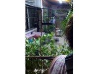 Beton zemine düşen kadın hayatını kaybetti