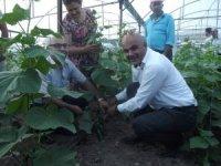Tuzluca Belediyesinden üretime destek