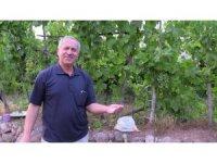 Emekli öğretmen kalker kayalarını tarım kirecine dönüştürdü, taleplere yetişemiyor