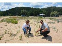 Tekirdağ'da biyoçeşitlilik izleme çalışmaları sürüyor