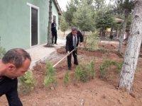 Altıntaş mesire alanında ağaçlandırma çalışmaları