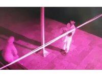 Bebeklerini camiye bırakan çift güvenlik kamerasına yakalandı