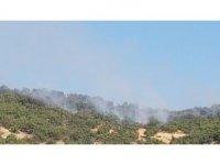 Hozat'ta orman yangını, ekipler müdahale ediyor