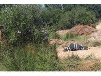 Çanakkale'de dere kenarında tabancayla vurulmuş erkek cesedi bulundu