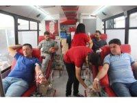 Düzenli kan bağışı kemik iliğinde yağlanmayı önlüyor