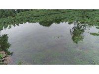 İki kişinin inadı çay bahçesini göle döndürdü